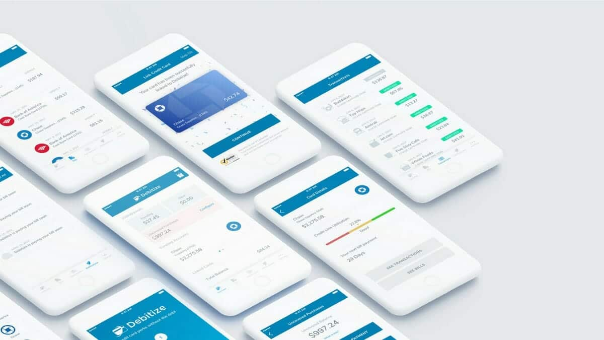 debitize review