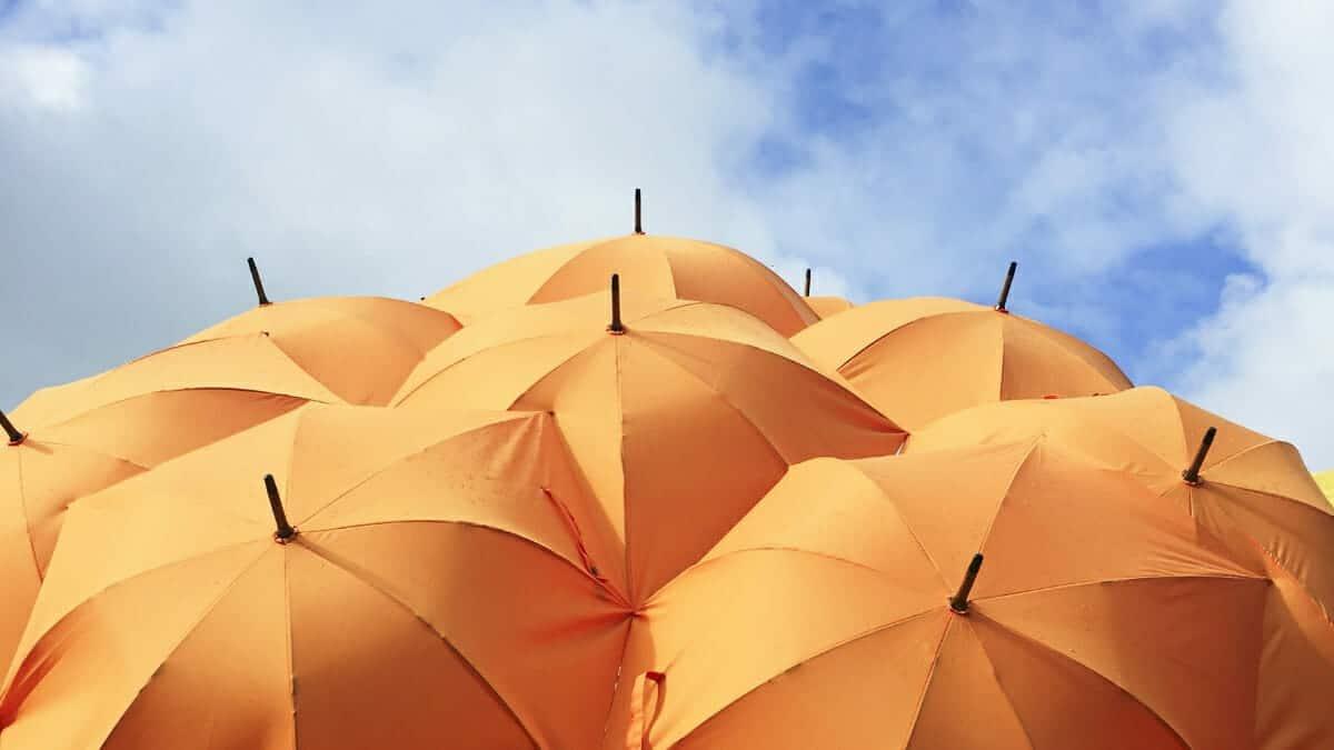 best-renters-insurance