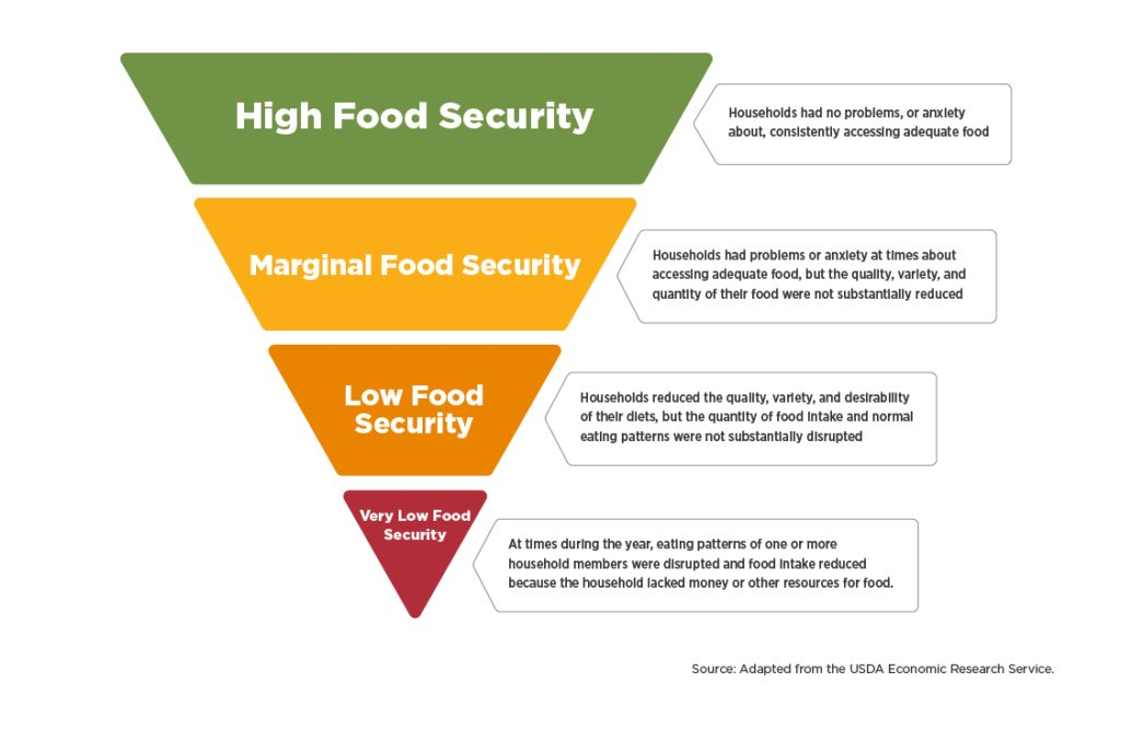 Food insecurity pyramid