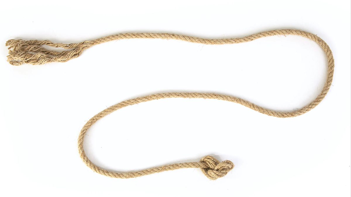 lasso with white background